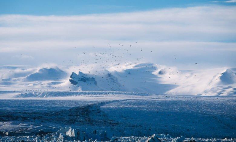 The arctic plains