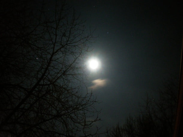Moon And Mars One