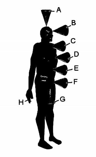 Human Vortices