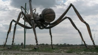 Photo of Will We Ever Be Attacked By Giant Mutant Ants?