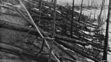 Photo of What Really Caused The Tunguska Event?