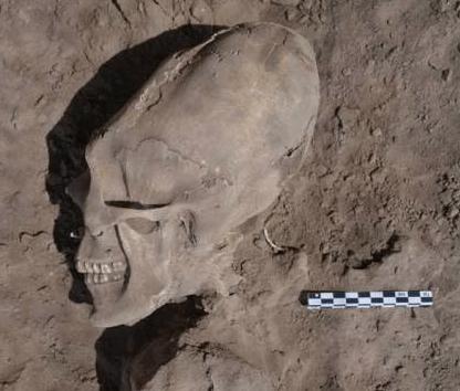 Dallas Thompson's Hollow Earth Tribe Skulls?