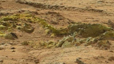 Photo of Evidence Of Fossilized Vertebrae Found On Mars?