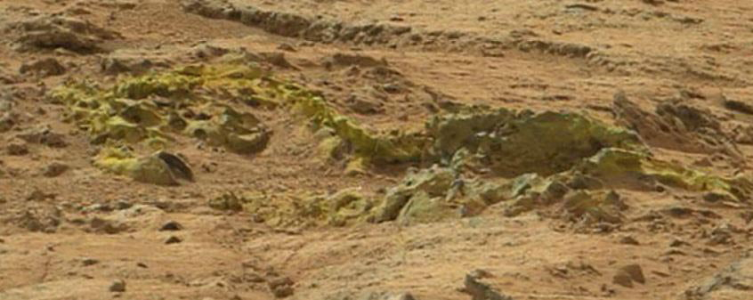Vertebrae Found On Mars?