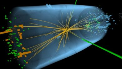 Photo of Physicists Confirm Discovery of the Higgs Boson