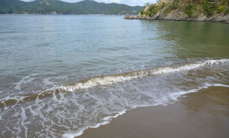 Waves on a Japanese shore