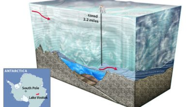 "Photo of Russian Scientists Discover ""Unidentified"" Life In Lake Vostok (Updated: No, no they didn't)"