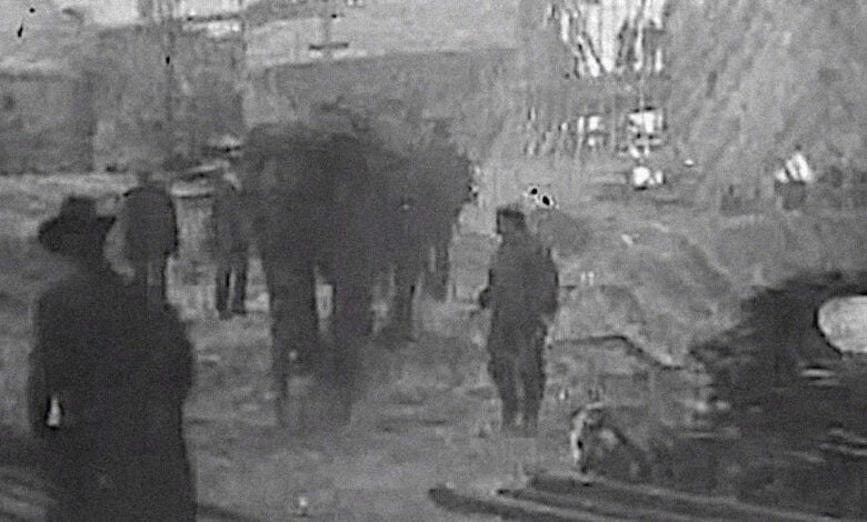 Topsy the elephant at Luna Park in 1903