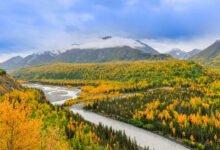 Photo of The Harrowing Tale of Alaska's Mysterious Orange Goo