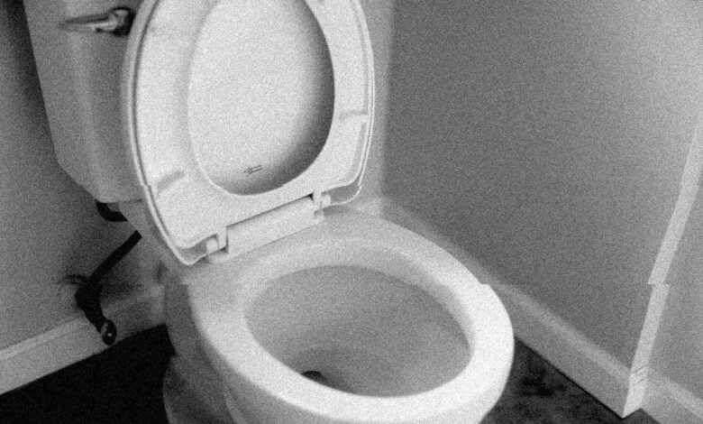 A normal toilet that may or may not be haunted