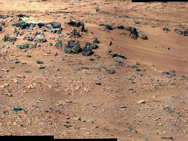 lets-start-a-zoo-on-mars