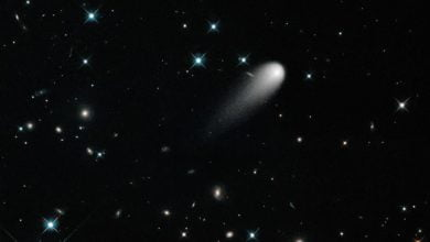 Photo of Comet ISON Is A UFO?! Nope, Say Scientists