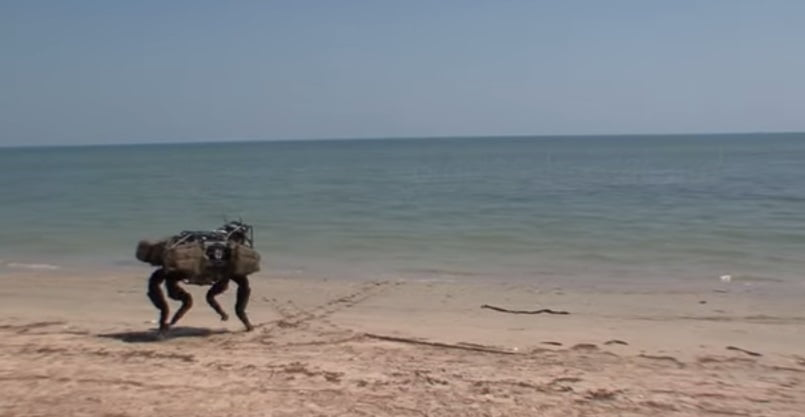 bd-bigdog-beach