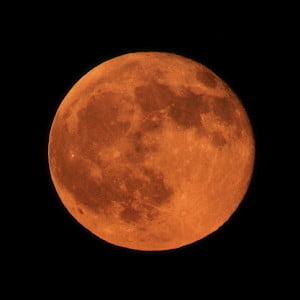 Image: Steve Jurvetson via CC by 2.0