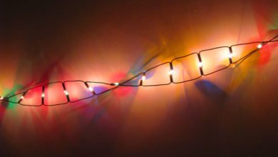 Photo of Breakthrough: Scientists Modify DNA to Repair Genes in Living Adult Animals