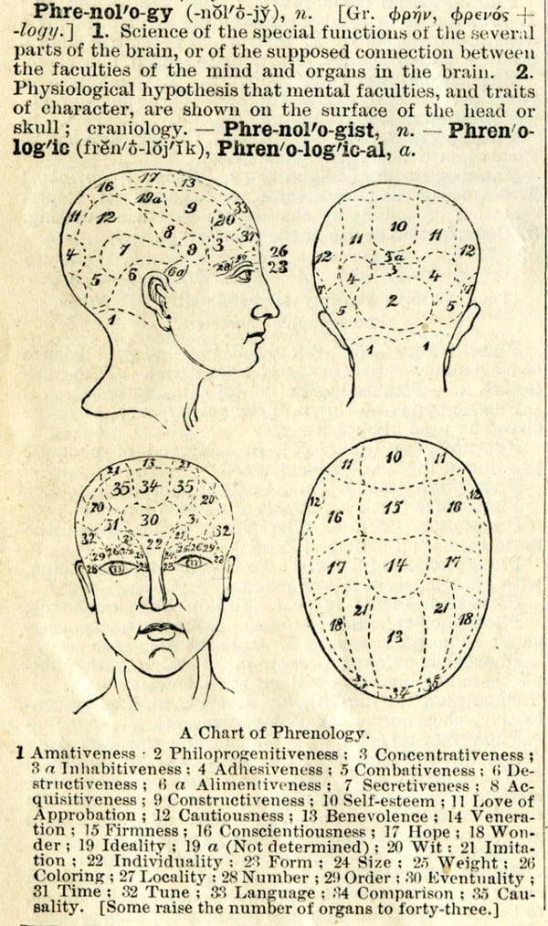 A scan of 1895 phrenology literature