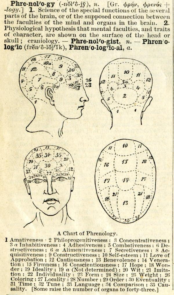 1895-Phrenolog