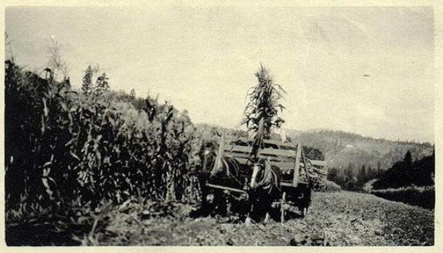 eua-ufo-1920