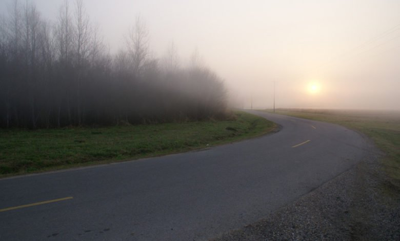 A lonely, misty road, where anything can happen