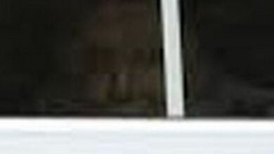 Photo of Victorian Ghost Photographed In Window of Wiltshire, England Home