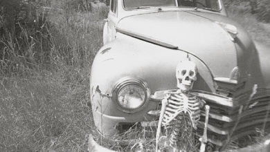 Photo of Mysterious Photos of the Skeletons Inside of Us