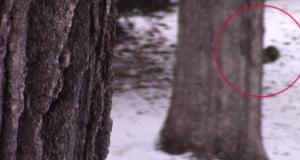 worst-paranormal-videos