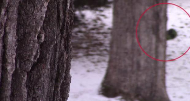 worst-paranormal-videos-620x330.jpg
