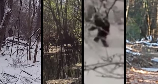 Image: Screencaps from the following Bigfoot sighting videos