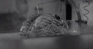 Image: Donovan's Brain (1953)