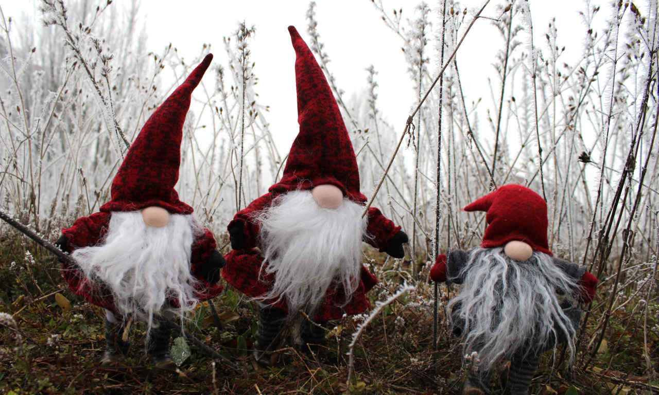 A group of gnomes are coming to get you