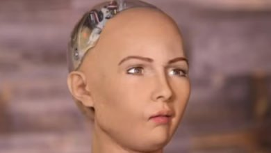 Photo of Sophia, the Robot that Will Destroy All Humans