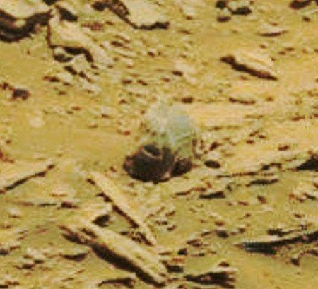 Mars Gopher