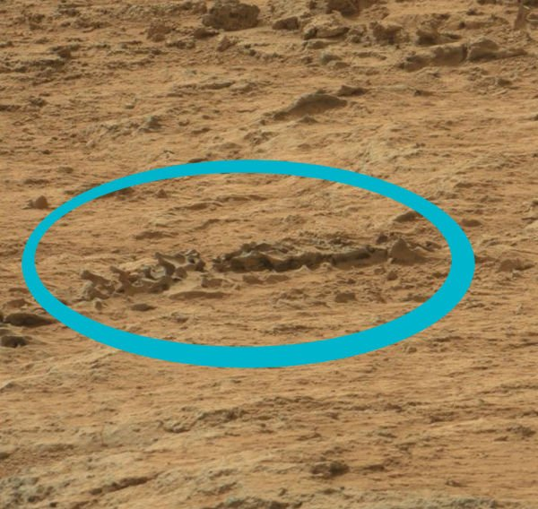A formation on Mars looks similar to a spine.
