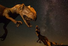 "Photo of Did Dinosaurs Once Exist On Mars? Weird Rocks and Other ""Evidence"""