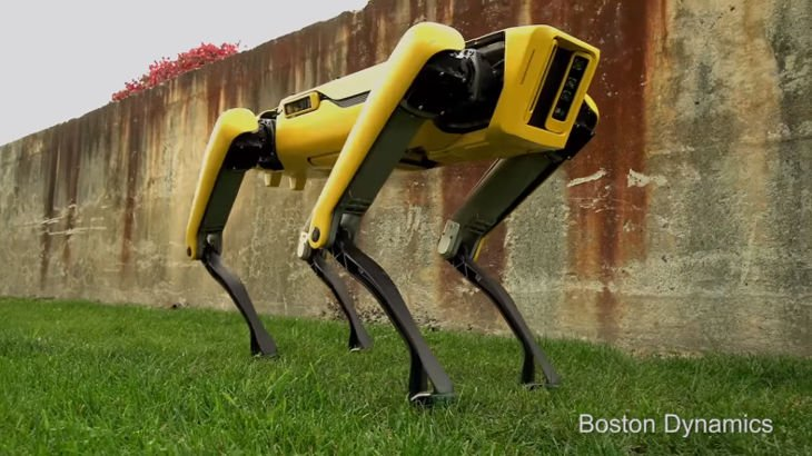 It's a yellow robot dog