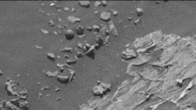 Photo of Mysterious Sphere Found On Mars Rover Image