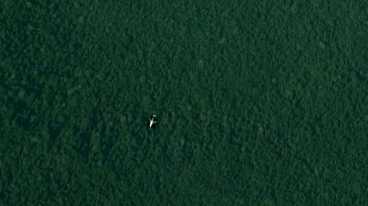 Google Maps Anomalies: A Plane in the Jungle