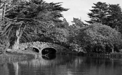 The Ghostly White Lady of Stow Lake