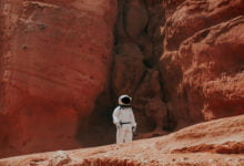 Photo of No Lizards Or Insects On Mars, Says NASA