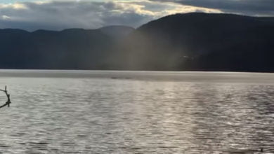 Photo of Possible Filmed Sighting of Legendary Canadian Lake Monster Ogopogo