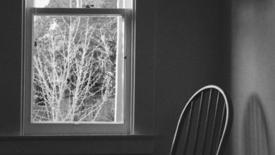 Photo of Bigfoot at the Window: One Man's Strange 2017 Encounter
