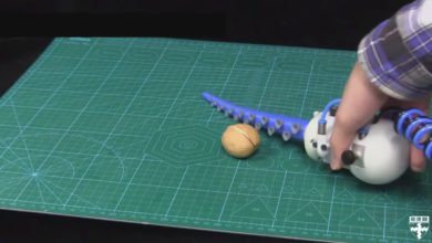 Photo of Harvard Scientists Create Robotic Arm Inspired By Octopus Tentacles