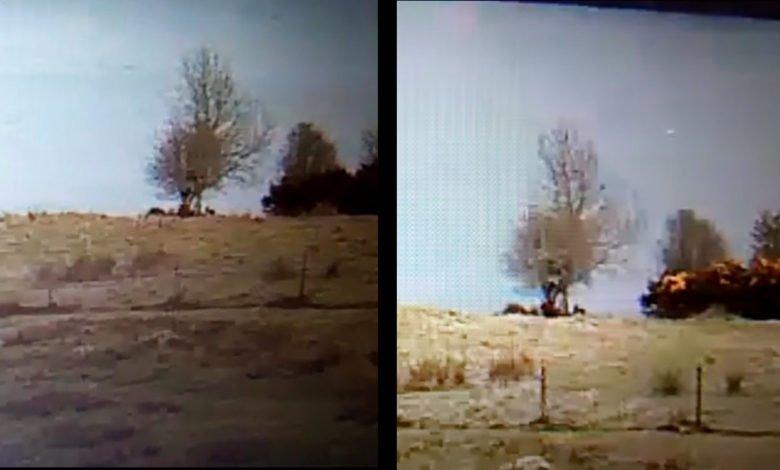 Webcam footage of unidentified object in Loch Ness