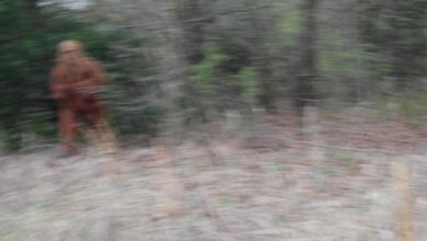 A blurry image of a man dressed up as Bigfoot