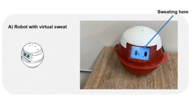 Photo of Japanese University Working On Spherical Robot that Sweats