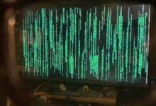 Photo of Man Uses Polarized 3D Glasses to See the Code in The Matrix