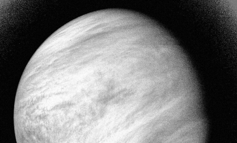 A black-and-white image of Venus