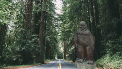 A Bigfoot statue next to a road