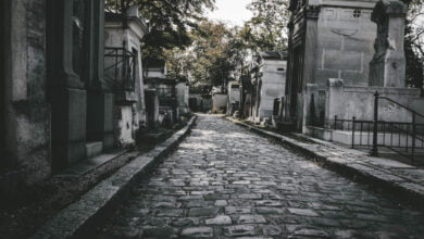 Photo of [Ghost News] Cemeteries, Castles, and Incorporeal Dogs