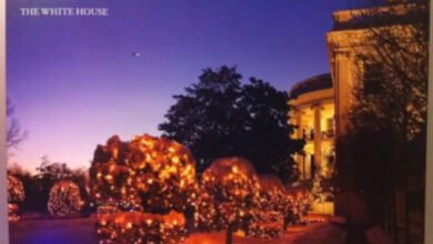 Photo of UFO Found On Official White House Christmas Card
